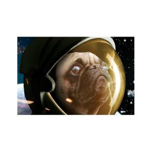 puggs-space-comedy-08